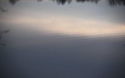 Venez apprendre à ralentir : atelier Mindfulness le week end du 11 avril